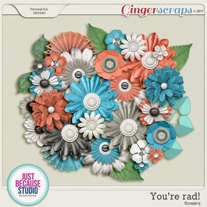 http://store.gingerscraps.net/You-re-Rad-Flowers-by-JB-Studio.html