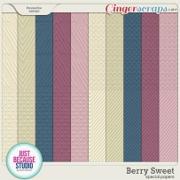 jb-berrys-specialpp